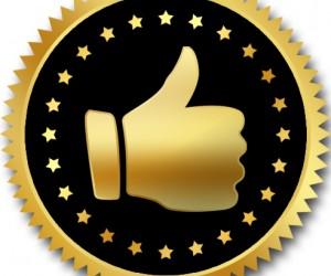 Votez pour le Like d'Or (Printemps 2013) – 11 nominés !