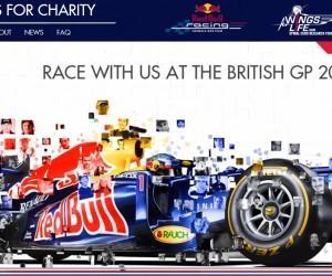F1 : Des milliers de visages imprimés sur les Redbull de Sébastian Vettel et Mark Webber