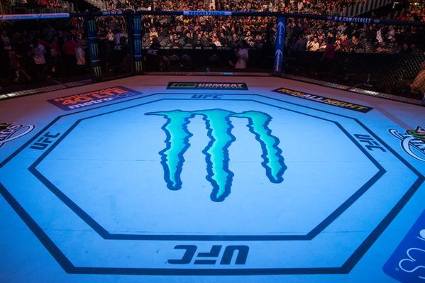 Monster Energy UFC octagon