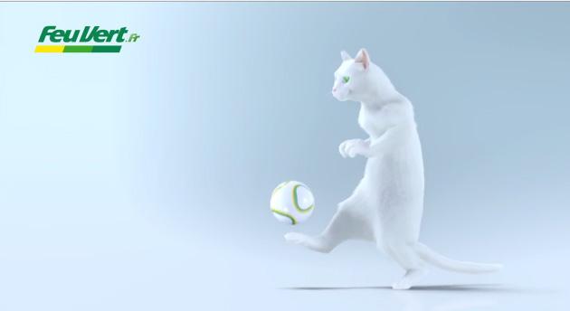 chat feu vert football france danemark publicité TF1