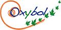 Offre de Stage : Assistant chef de projets – OXYBOL