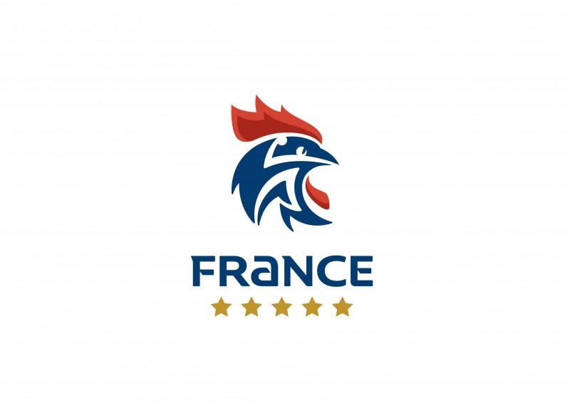 nouveau logo Fédération française handball équipe masculeine