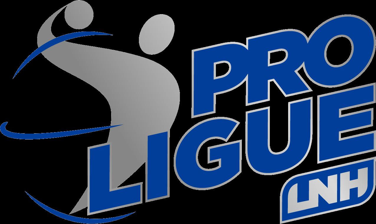 Image Representant Le Sport >> Handball - La ProD2 intègre la LNH et devient la Proligue - SportBuzzBusiness.fr
