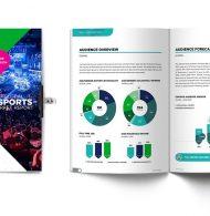 Le business de l'eSport pourrait représenter 1,5 milliard de dollars en 2020