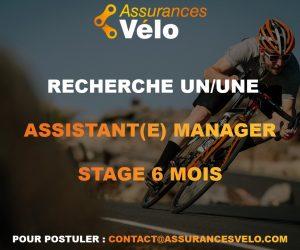 Offre de Stage : Assistant Manager – Assurances Vélo