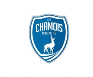 Offre Emploi : Assistant comptable/gestion – Chamois Niortais FC