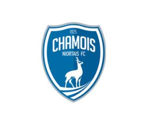 Offre Emploi : Responsable Sureté et sécurité – Chamois Niortais FC
