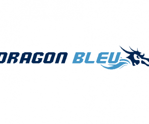 Offre de Stage : Community Manager – Dragon Bleu