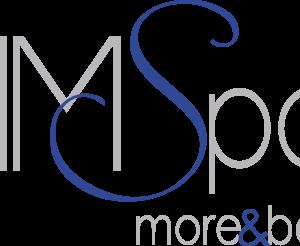 Offre de Stage : Assistant(e) communication – MMSPORT