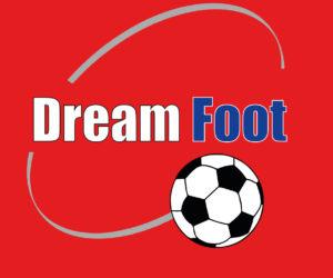 Offre Emploi : Agent accueil et commercial – Dream Foot