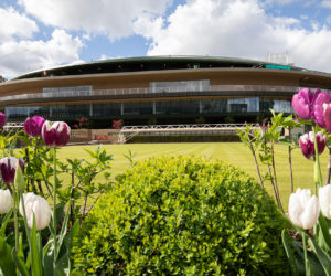 Wimbledon 2019 : Un prize money en augmentation de 11,8%