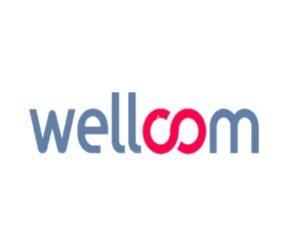 Offre de Stage : Consultant(e) Médias – Wellcom