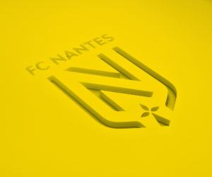 Offre de Stage : Customer success – FC Nantes