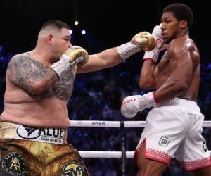 Boxe : Anthony Joshua et Andy Ruiz vont se partager 100 millions de dollars avec leur combat organisé en Arabie Saoudite