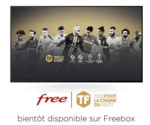 Média – La chaîne Téléfoot (Médiapro) disponible chez Free et ses Freebox